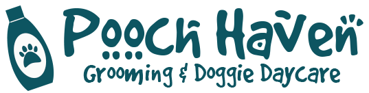 Professional Dog Groomer for All Breeds